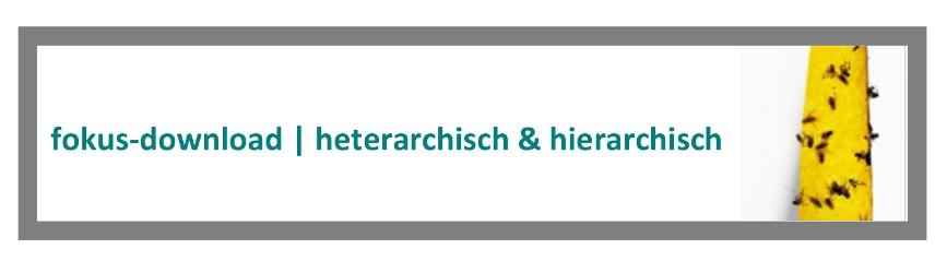 fokus-heterarchisch