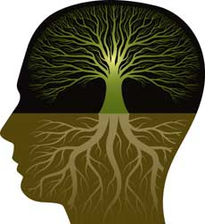 Forschung Entwicklung Symbolon Reflexion Assessment